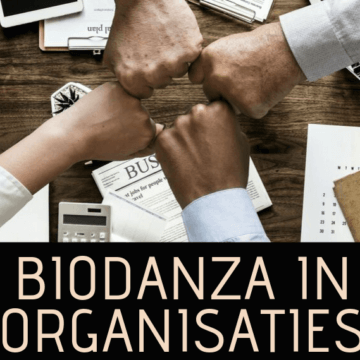 Biodanza in Organisaties